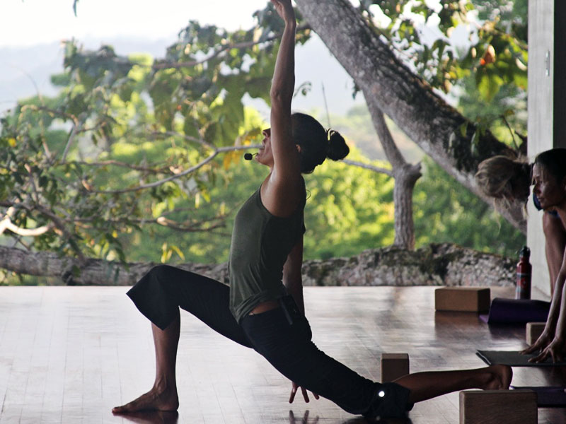 The Art of Flow: Vinyasa Yoga Teacher Training